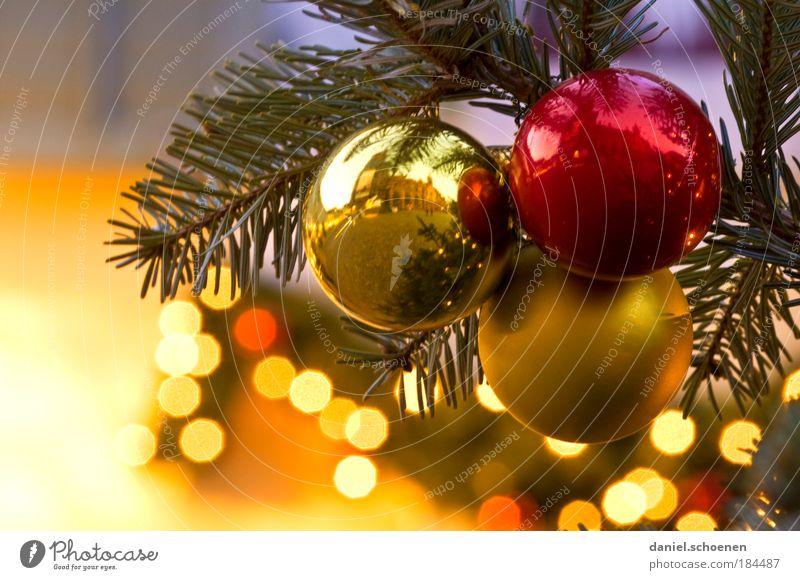 Hauptsache viel Gold am Baum Detailaufnahme Dämmerung Dekoration & Verzierung Vorfreude Christbaumkugel Licht Kugel Tanne Weihnachtsbaum Weihnachten & Advent