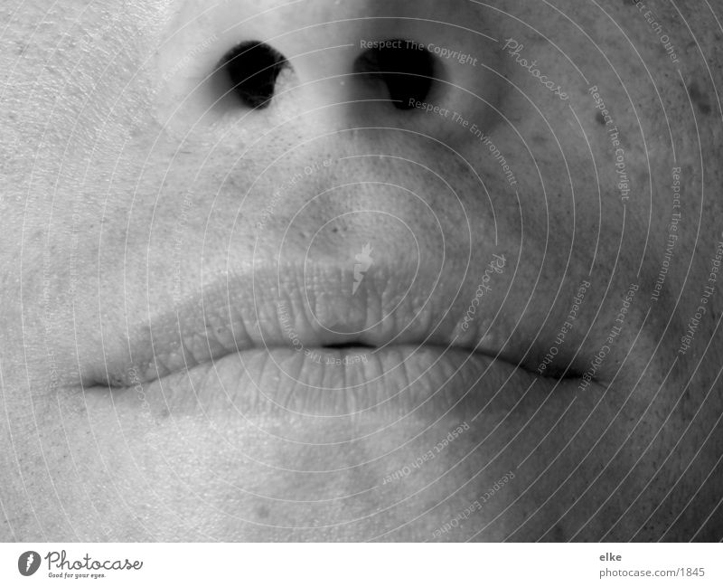 Teilgesicht Mensch Mann Gesicht Mund Nase
