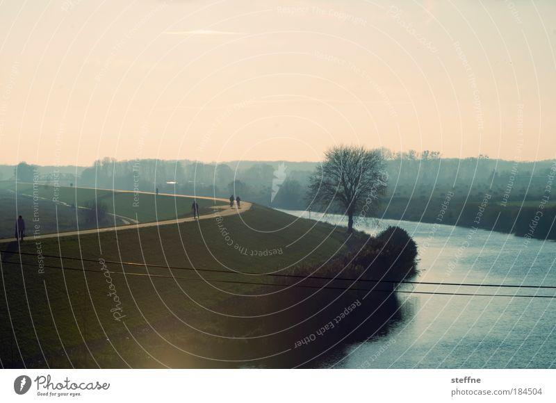 Frühling Mensch Baum Erholung Landschaft Herbst Bewegung Freizeit & Hobby Nebel Ausflug Spaziergang Fluss Hügel Flussufer Wolkenloser Himmel Gegenlicht