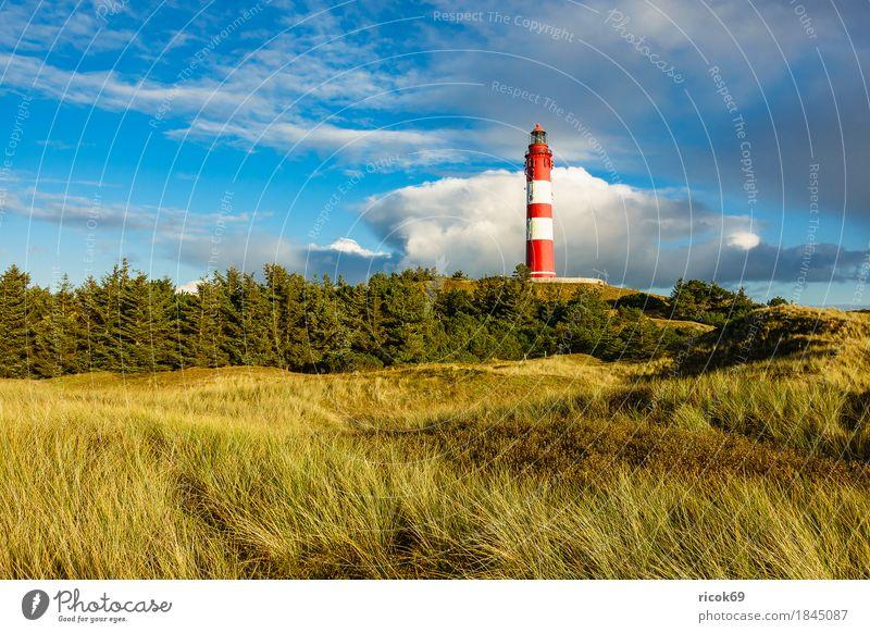 Leuchtturm in Wittdün auf der Insel Amrum Erholung Ferien & Urlaub & Reisen Tourismus Natur Landschaft Wolken Herbst Baum Wald Küste Nordsee Architektur