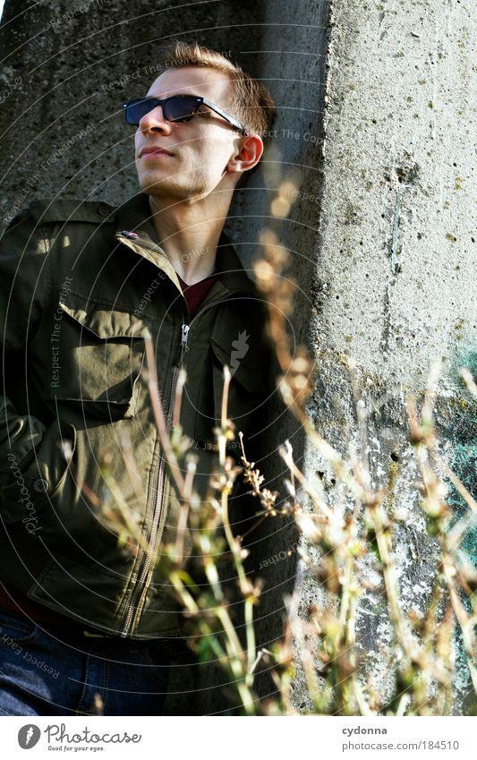 Weitblick Mensch Mann Jugendliche schön Pflanze Leben Wand Gefühle Stil Freiheit träumen Mauer Zufriedenheit Mode Erwachsene elegant