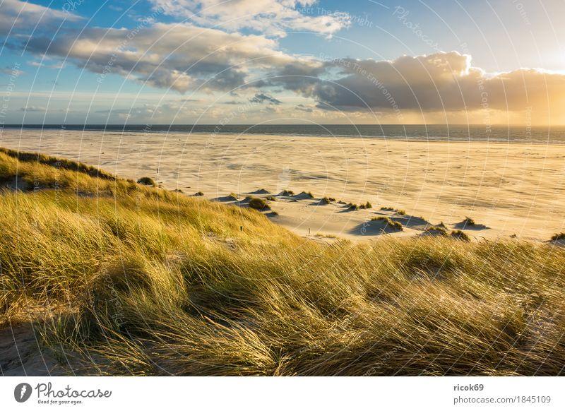 Landschaft mit Dünen auf der Insel Amrum Erholung Ferien & Urlaub & Reisen Tourismus Strand Meer Natur Sand Wolken Herbst Küste Nordsee blau gelb