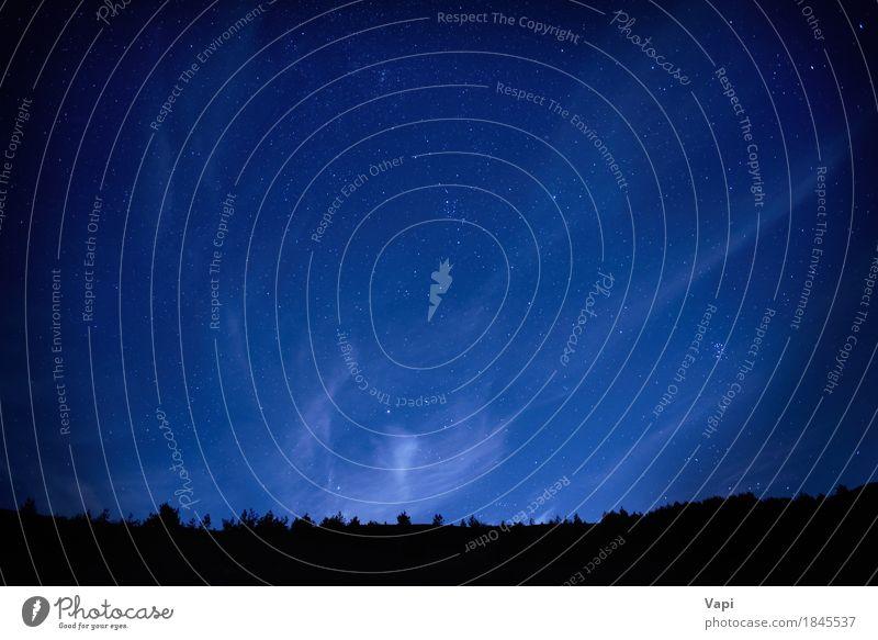 Blauer dunkler nächtlicher Himmel mit vielen Sternen Natur Ferien & Urlaub & Reisen blau Farbe weiß Baum Landschaft Wolken dunkel Wald Berge u. Gebirge schwarz