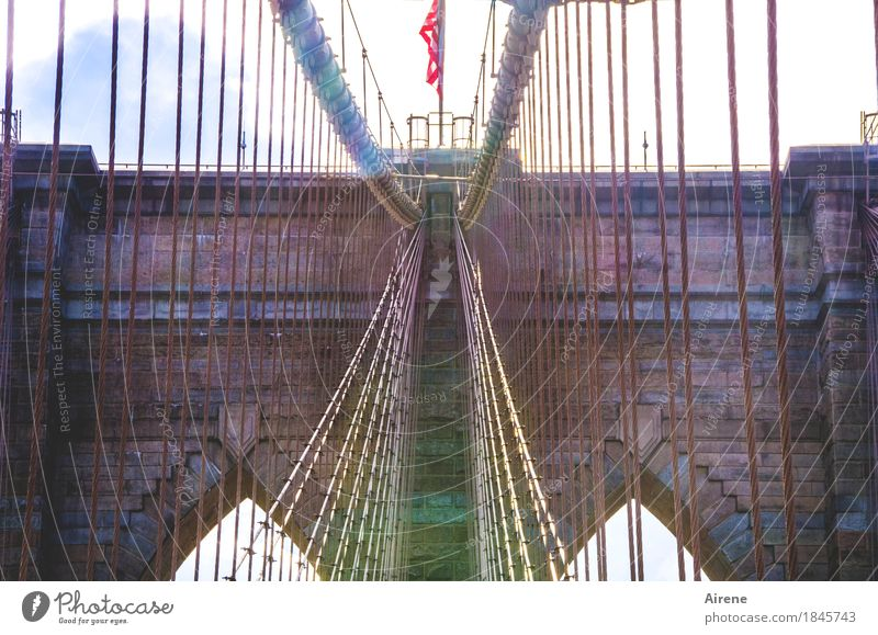 mainstream New York City USA Hauptstadt Stadtzentrum Menschenleer Brücke Sehenswürdigkeit Wahrzeichen Brooklyn Bridge Stein Stahl Linie Netzwerk festhalten