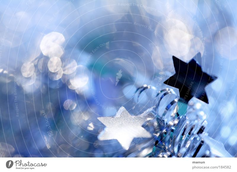 Gefunkel Farbfoto Nahaufnahme Detailaufnahme Textfreiraum links Textfreiraum oben Hintergrund neutral Kunstlicht Kontrast Silhouette Reflexion & Spiegelung