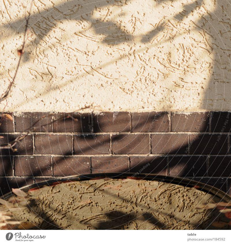 randvoll Farbfoto Gedeckte Farben Menschenleer Textfreiraum oben Textfreiraum Mitte Tag Schatten Reflexion & Spiegelung Sonnenlicht Garten Wasser Mauer Wand