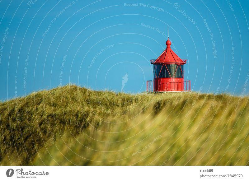 Leuchtturm in Norddorf auf der Insel Amrum Erholung Ferien & Urlaub & Reisen Tourismus Natur Landschaft Herbst Küste Nordsee Architektur Sehenswürdigkeit