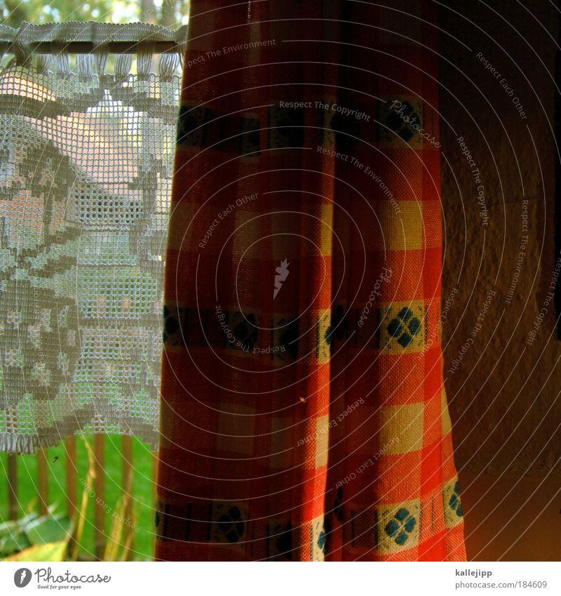 küchenfenster Farbfoto mehrfarbig Außenaufnahme Innenaufnahme Nahaufnahme Detailaufnahme Muster Strukturen & Formen Tag Licht Schatten Kontrast Lifestyle