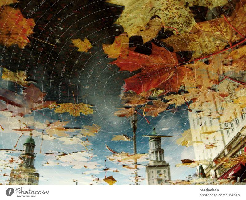 AQUAGRAFIE Farbfoto Außenaufnahme Unterwasseraufnahme Experiment abstrakt Muster Strukturen & Formen Menschenleer Tag Licht Silhouette Reflexion & Spiegelung