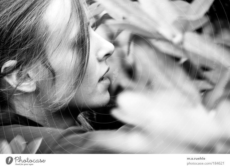 momo II Mensch Jugendliche weiß schön Gesicht Erwachsene Auge feminin Kopf Haare & Frisuren Mund Haut natürlich Nase weich Ohr