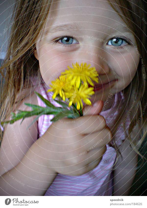 »Papa, alles Gute zum Muttertag« Mensch Kind blau Mädchen Blume Gesicht Auge Liebe gelb Feste & Feiern Porträt Kopf Haare & Frisuren Glück Gesundheit Kindheit