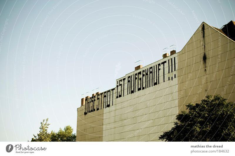 DIESES STADT IST AUFGEKAUFT !!! Stadt Baum Sommer Haus Tod Wand Graffiti Gebäude Mauer Luft Fassade Schriftzeichen einzigartig Information