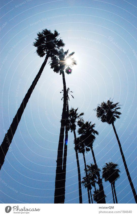 Miami Beach. Natur Himmel Sonne Meer Sommer Freude Strand Ferien & Urlaub & Reisen Leben Erholung Freiheit Wärme Landschaft ästhetisch USA Freizeit & Hobby
