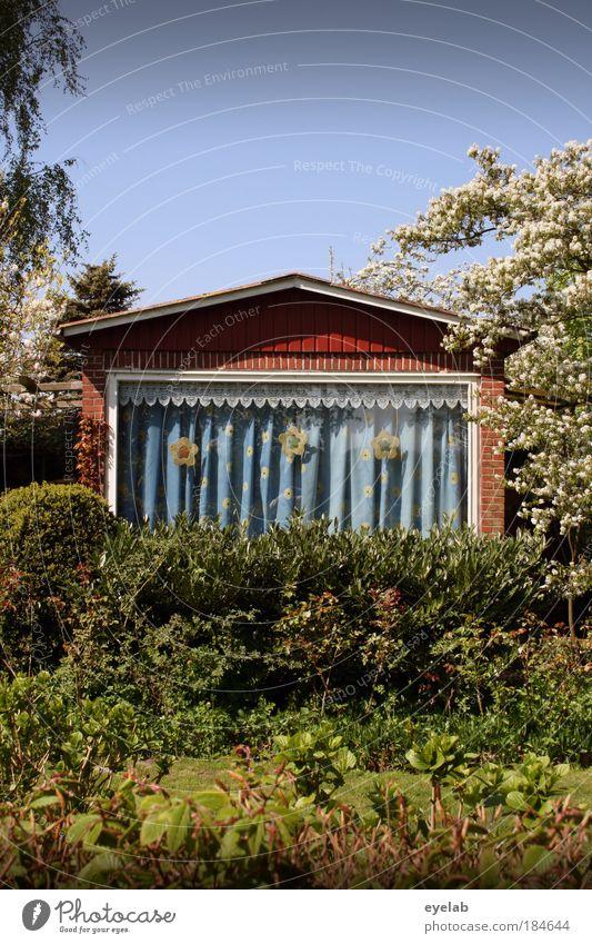 iDülle (Eppel™) V.2.0 Natur schön Pflanze Haus Fenster Blüte Garten Gebäude Architektur Wohnung klein verrückt Fassade einfach Kitsch Häusliches Leben