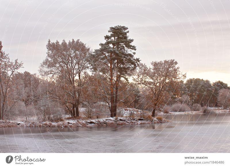 Kalter schneebedeckter Morgen auf dem See. Spätherbst Himmel Natur Ferien & Urlaub & Reisen Pflanze weiß Baum Landschaft Wolken Winter Wald Umwelt Herbst