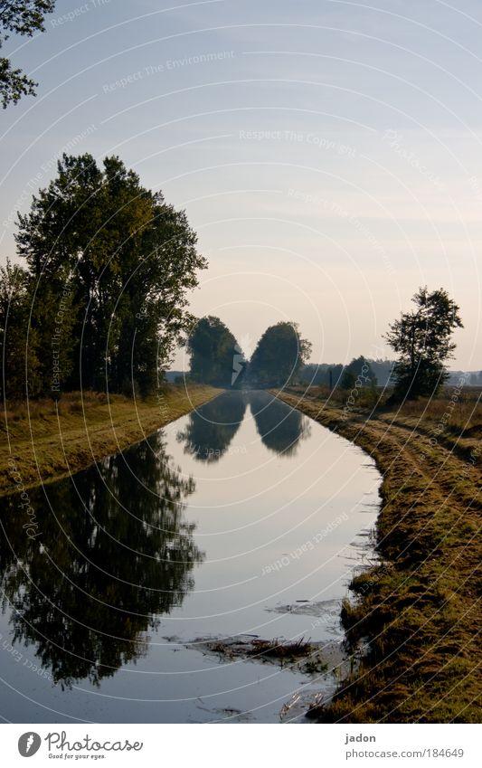 an der biegung des flusses Außenaufnahme Menschenleer Textfreiraum oben Morgen Zentralperspektive ruhig Natur Landschaft Pflanze Wasser Baum Flussufer natürlich