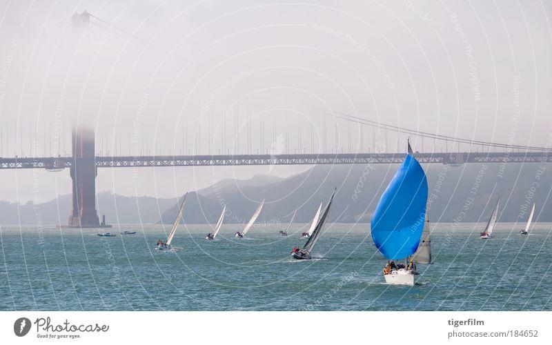 Segelboot in der Bucht von San Francisco Farbfoto Außenaufnahme Textfreiraum oben Tag Panorama (Aussicht) Kreuzfahrt Segeln Sommer Nebel Hafenstadt Brücke