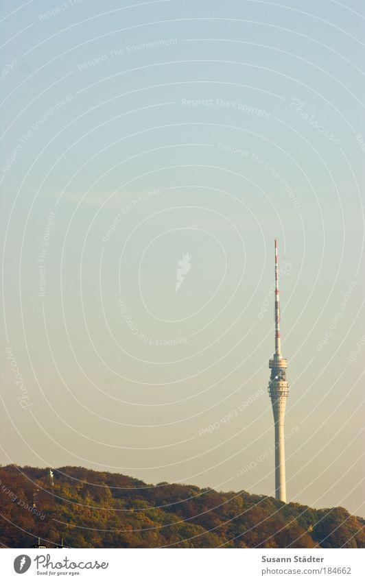 Dresdner Telespargel Himmel Baum Pflanze Wald Herbst Fenster Berge u. Gebirge Architektur Felsen Tourismus Kommunizieren Turm Hügel Restaurant Gipfel Denkmal