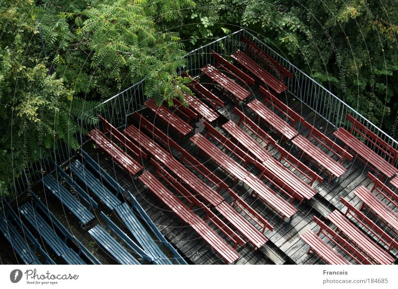 Theaterbänke2 Farbfoto Außenaufnahme Menschenleer Tag Vogelperspektive Veranstaltung Open Air Baum Wald Ruine Bank Reihe blau verlassen niemand Ecke Wuchern