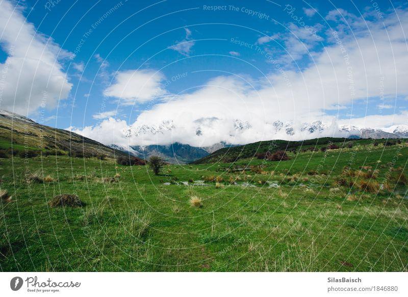 Landschaft Natur Ferien & Urlaub & Reisen Pflanze Farbe Freude Ferne Leben Lifestyle Sport Gras Garten Freiheit Stimmung Park Ausflug