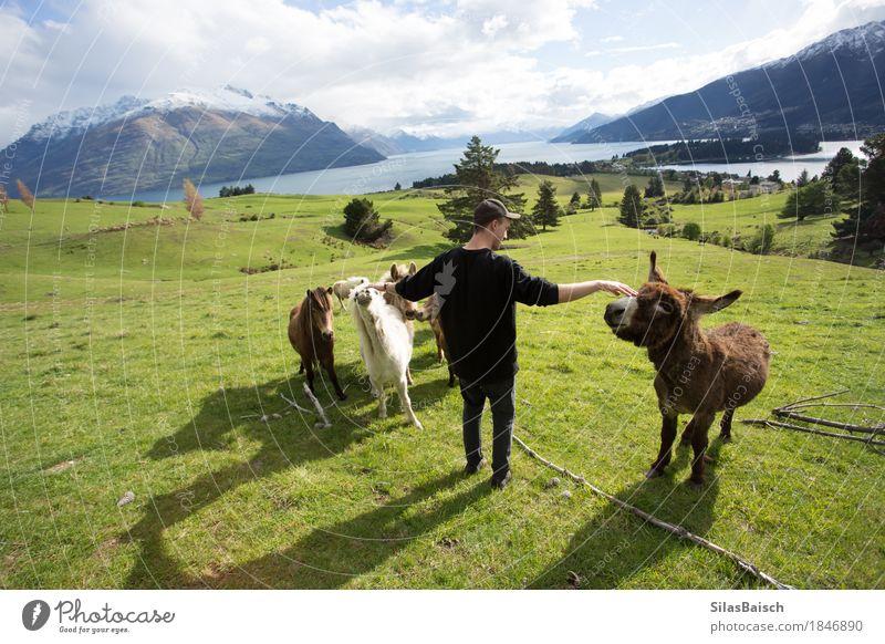 Überqueren der Ponys Natur Ferien & Urlaub & Reisen Jugendliche Pflanze Sommer Junger Mann Tier Freude Ferne 18-30 Jahre Erwachsene Gras Freiheit See Felsen
