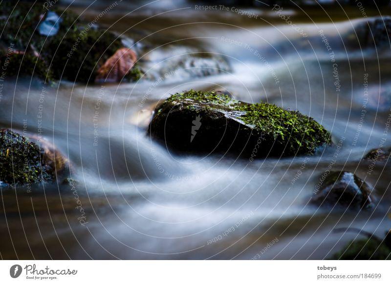 sanft Natur Fluss Wasser Umwelt kalt Stein natürlich Wellen Trinkwasser frisch Pflanze Erfrischung Langzeitbelichtung Bach Moos fließen