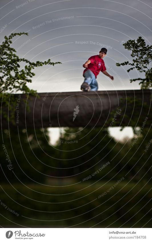 Skyramp Mensch Sport maskulin Skateboard sportlich Halfpipe