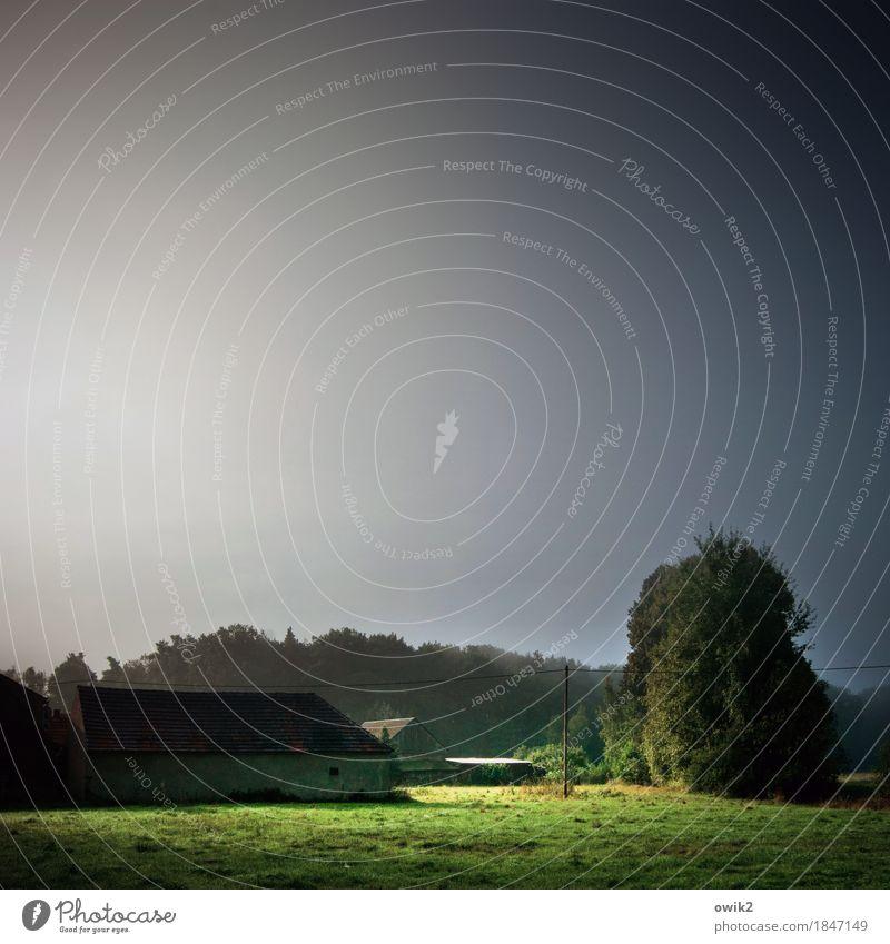 Wald- und Wiesenfoto Umwelt Natur Landschaft Pflanze Luft Wolkenloser Himmel Horizont Klima Schönes Wetter Baum Gras Dorf Haus Scheune Bauernhaus Fassade
