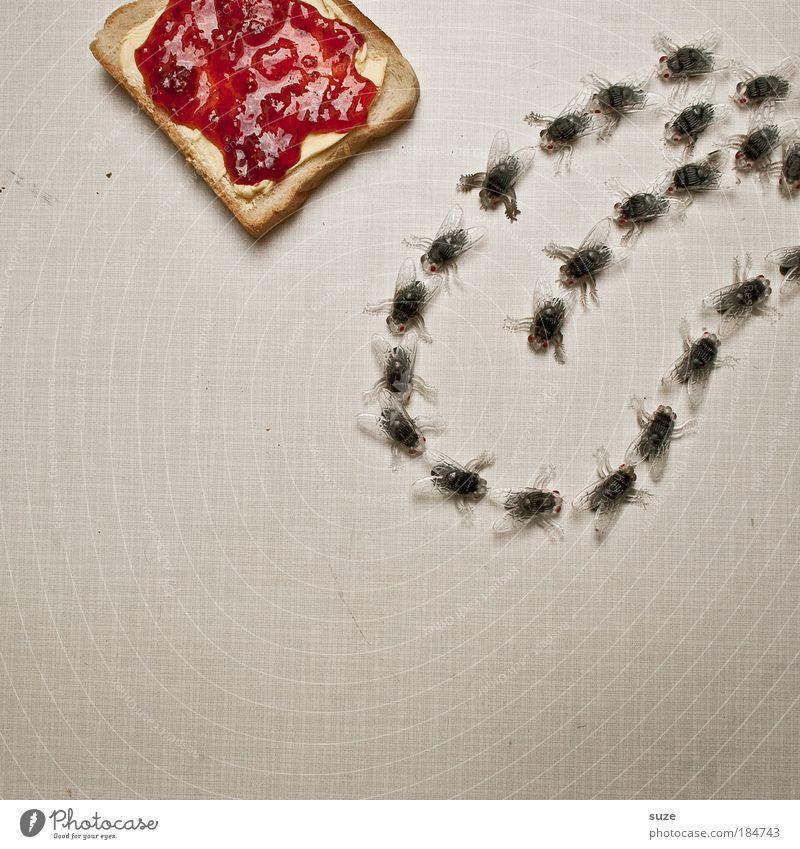 The Rolling Stones rot Freude lustig Lebensmittel Fliege Ernährung süß Kreativität Idee Kunststoff Insekt Appetit & Hunger Brot lecker Picknick Zunge