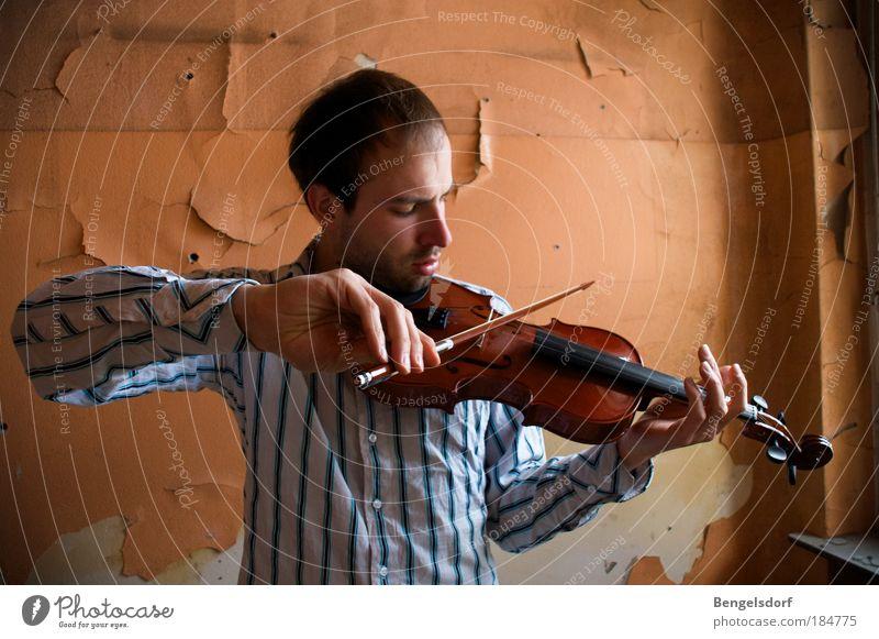 Katzenjammer Mensch Hand Jugendliche ruhig Spielen Musik Holz orange Kunst Freizeit & Hobby Saiteninstrumente Künstler Konzert Tapete Konzentration hören