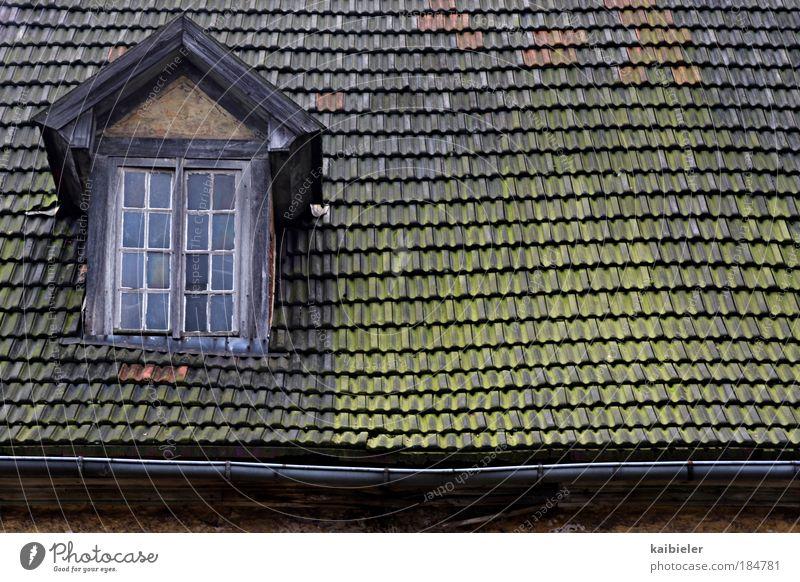 leichter Dachschaden alt grün rot Haus Fenster Gebäude braun Architektur kaputt Vergänglichkeit Dorf Idylle Verfall Vergangenheit Bauwerk