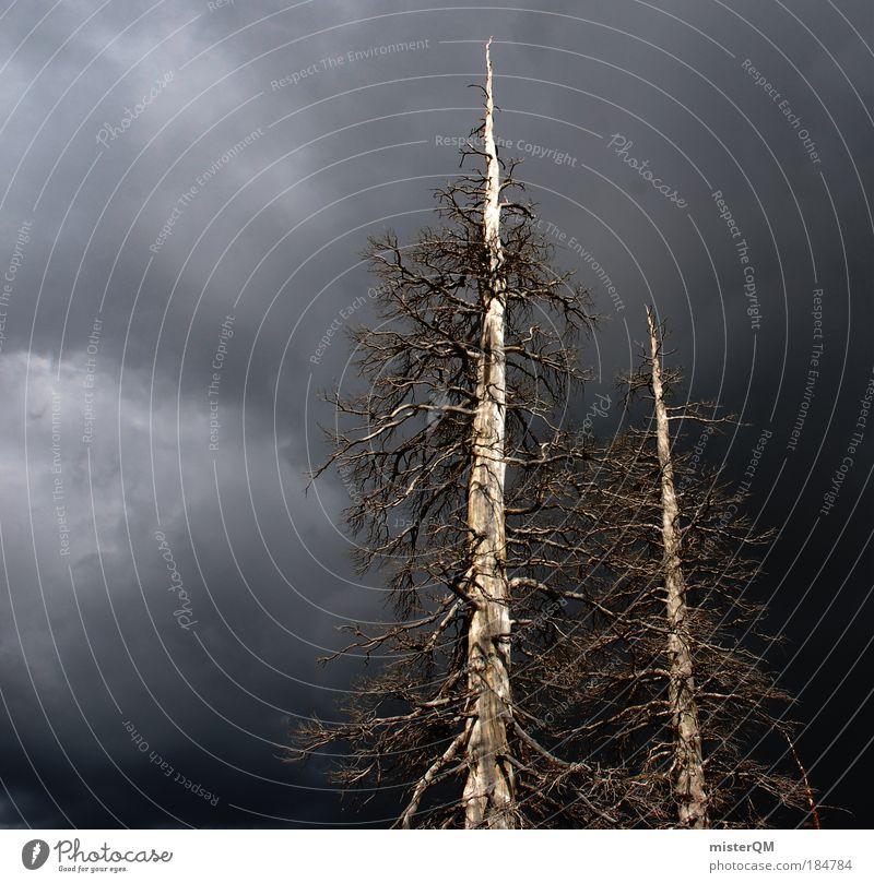 Düsterwald. Natur Baum Einsamkeit dunkel Tod Angst gefährlich trist Ende bedrohlich Vergänglichkeit Gewitter Desaster Surrealismus Sorge Zerstörung