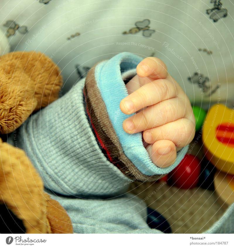 protection needed Baby Hand Finger 0-12 Monate Kinderwagen Pullover Jacke Spielzeug Teddybär Stofftiere liegen schlafen klein nah Wärme mehrfarbig Glück