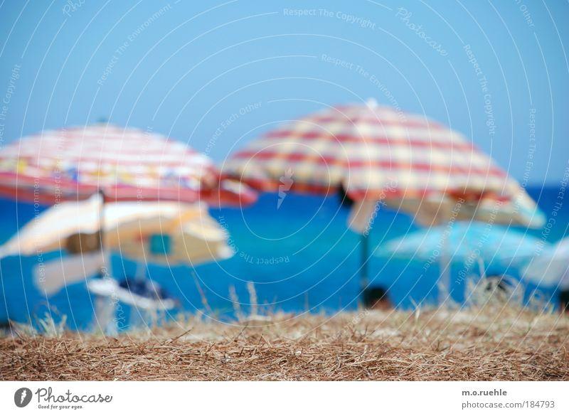 saisonal Wasser Himmel Sonne Meer blau Sommer Strand Ferien & Urlaub & Reisen Landschaft Zufriedenheit Küste Umwelt Ausflug Italien Insel Tourismus