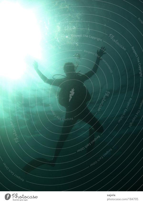 dem licht entgegen Mensch Mann Wasser Sonne Meer Freiheit hell Erwachsene maskulin ästhetisch Freizeit & Hobby tauchen Urelemente atmen Luftblase Schwimmhilfe