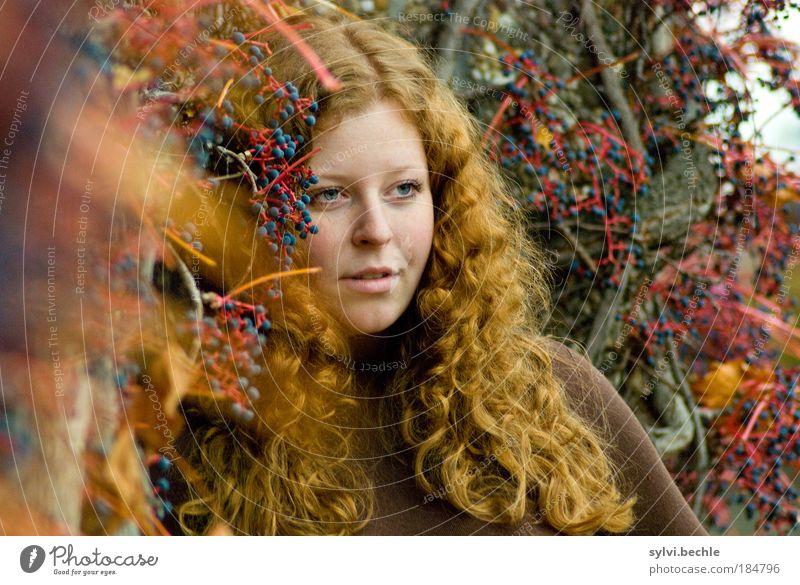 red! Jugendliche schön blau rot Gesicht Farbe Herbst feminin Gefühle Haare & Frisuren träumen Stimmung braun Frucht Sträucher Frau