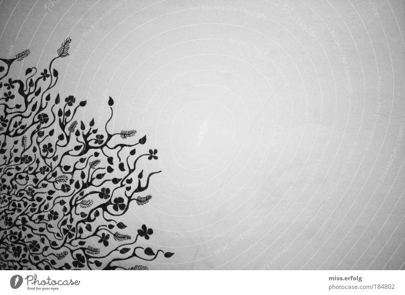 Auf meinem Blatt sprießt es nur so, vor lauter Gedanken... Blume Muster schön weiß Pflanze schwarz Tier Glück träumen Menschenleer verrückt Papier Fröhlichkeit rund nah weich