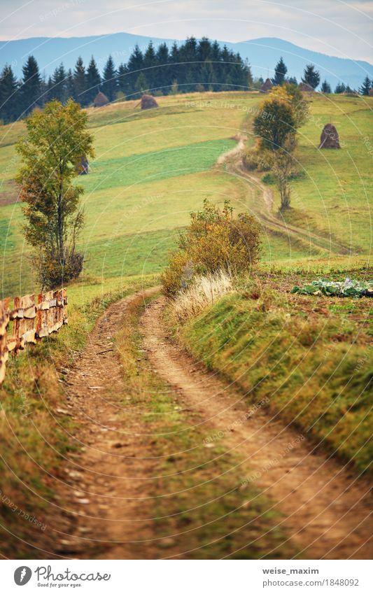 Herbstgarten in den Karpatenbergen Natur Ferien & Urlaub & Reisen grün Baum Landschaft Wolken Ferne Berge u. Gebirge Straße gelb Wiese Gras Garten Tourismus