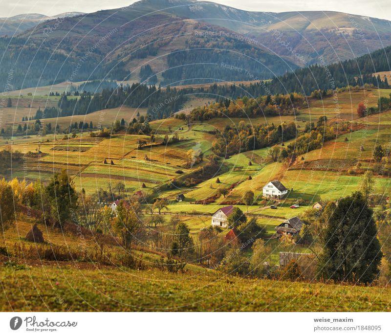 Natur Ferien & Urlaub & Reisen Pflanze grün Baum Landschaft Haus Ferne Wald Berge u. Gebirge Umwelt gelb Herbst Wiese Gras Garten