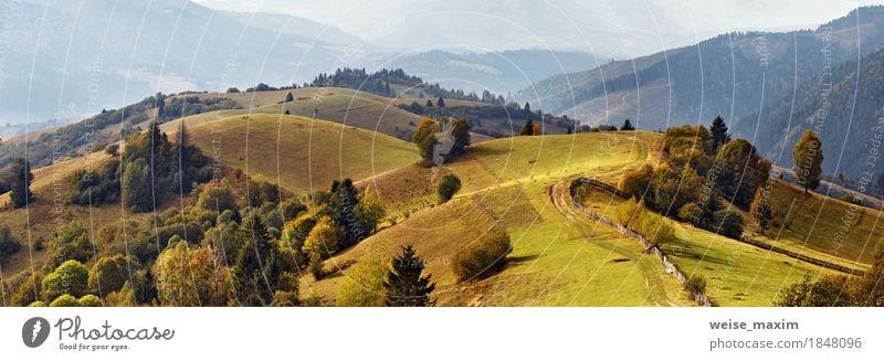 Herbstgarten in den Karpatenbergen. Fall auf die Berge Natur Ferien & Urlaub & Reisen grün Baum Landschaft Ferne Berge u. Gebirge gelb Wege & Pfade Wiese Gras