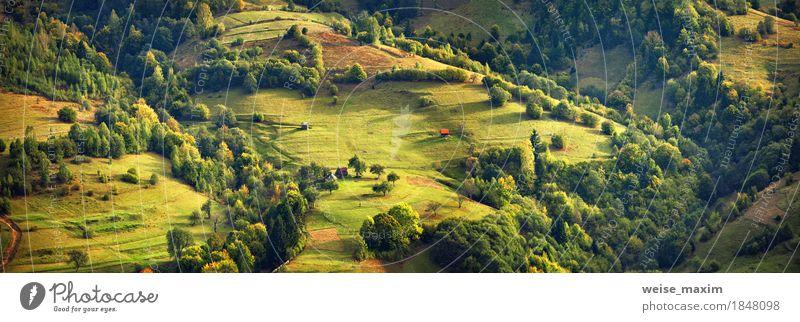 Sonniger Abend in den Bergen. Herbstdorf auf Hügeln Natur Ferien & Urlaub & Reisen Sommer grün Baum Landschaft Haus Ferne Wald Berge u. Gebirge gelb Wiese Gras