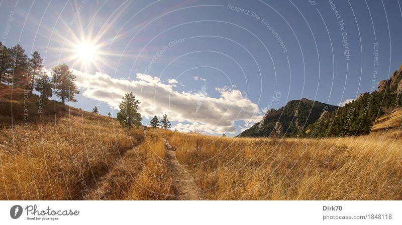 Colorado-Panorama: Herbstliche Wiesen und Berge Ferien & Urlaub & Reisen Ferne Freiheit wandern Natur Landschaft Wolken Sonne Sonnenlicht Schönes Wetter Wärme