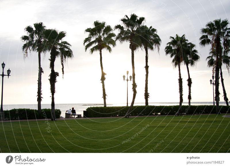URLAUB-ich komme. Himmel Natur Sonne Sommer Strand Ferien & Urlaub & Reisen Meer Ferne Erholung Wiese Freiheit Landschaft Park Wetter Wellen Ausflug