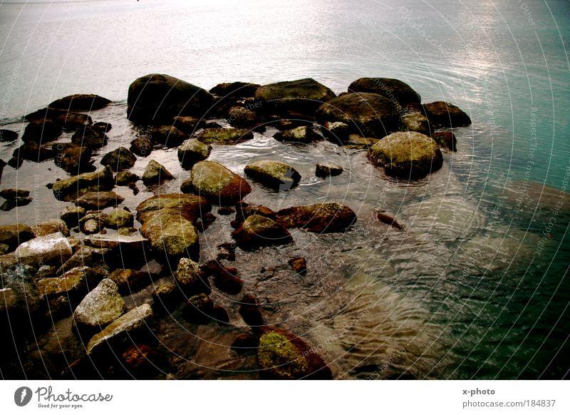 Wasser. Natur Sommer Ferien & Urlaub & Reisen Meer Ferne Erholung Freiheit Ausflug Tourismus Sommerurlaub