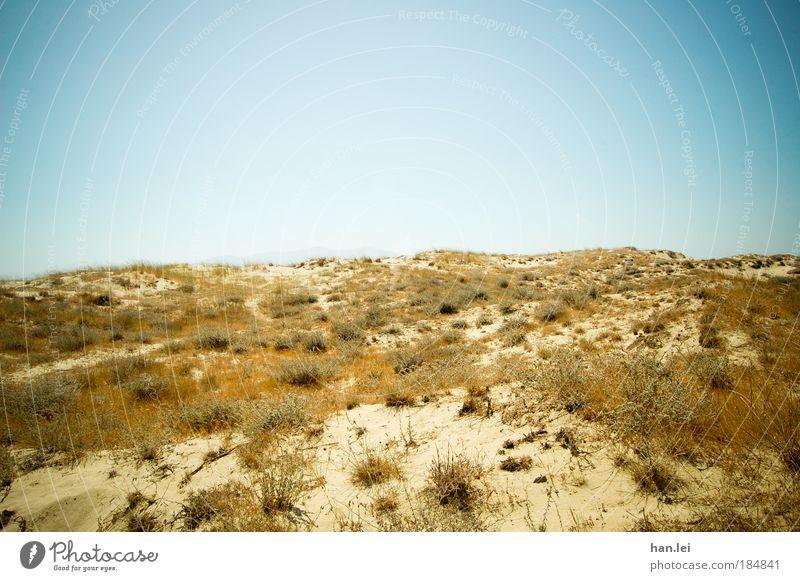 Düne Natur Himmel Meer blau Pflanze Sommer Strand gelb Sand braun Kraft gold Erde trist Sträucher Wüste