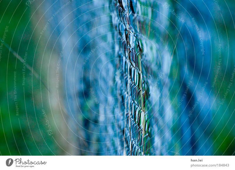 Gartenzaun grün blau Gras Metall Grenze Zaun Tiefenschärfe Herbstfärbung Herbstwetter