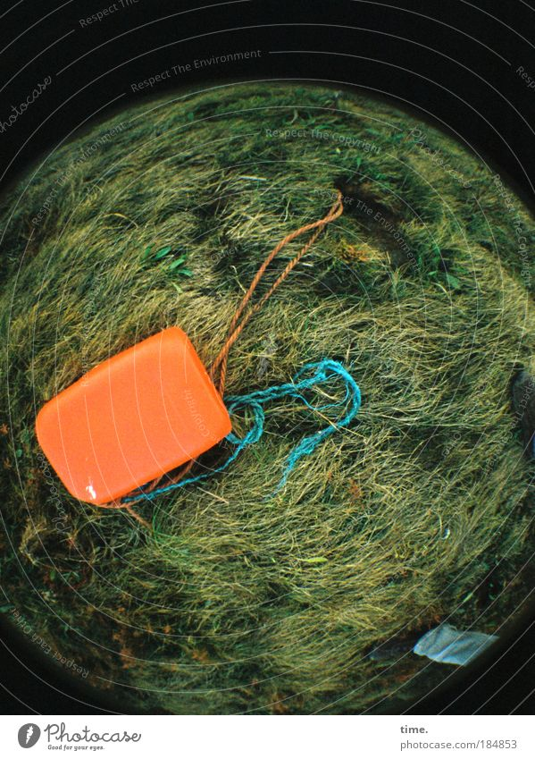 Planet Trash Wiese orange Küste Lomografie Seil Wachstum Rasen liegen Müll Dinge Kugel Schnur trashig Seeufer Hochwasser angeleint