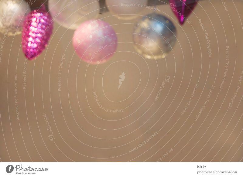 BASLER-LECKERLI ODER ROSA-HANSAPLAST Weihnachten & Advent ruhig Wand Stil Mauer Zufriedenheit braun Feste & Feiern Kunst glänzend rosa verrückt Lifestyle Kitsch Dekoration & Verzierung