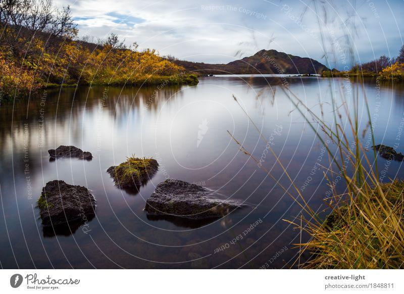 Silence Natur Landschaft Pflanze Wasser Himmel Wolken Herbst Wetter Gras Moos Wildpflanze Felsen Küste Seeufer Moor Sumpf Stimmung Zufriedenheit Vertrauen