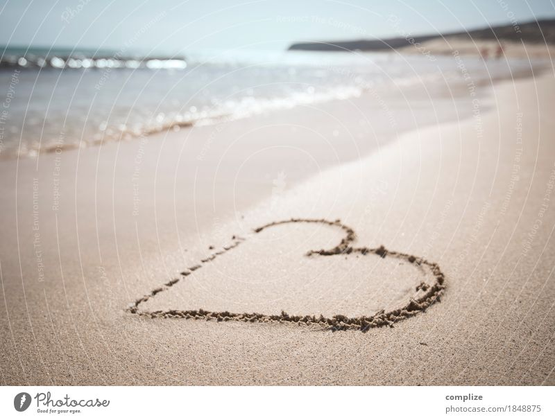 Strand-Liebe Lifestyle Freude schön Gesundheit Ferien & Urlaub & Reisen Ferne Sommer Sommerurlaub Sonne Sonnenbad Meer Wellen Flirten Hochzeit Schwimmen & Baden